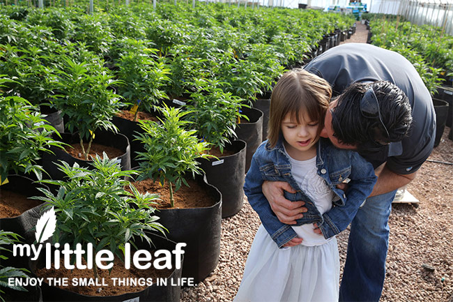 charlotte-little-leaf-4